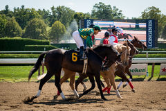 Saratoga Springs Horse Racing Stock Images