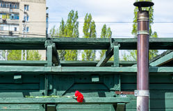 SARATOV, RUSSIA - MAY 6, 2017: Mobile Museum the Victory Train. Carnation flowers placed on wooden wagon. stock images