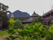 Sarawak Cultural village Kuching Iban Longhouse. Sarawak Cultural village Kuching - Iban longhouse. A longhouse is built of axe-hewn timber,roofed with leaf Royalty Free Stock Photos