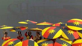 Sarawak-Flagge Stockbild