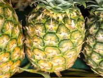 Sarawak`s pineapple for sell stock photo