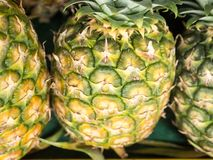 Sarawak`s pineapple for sell royalty free stock photos
