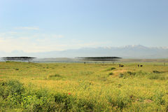 Sarazm, le Tadjikistan photo stock