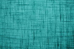 Sarcelle d'hiver de la texture 1 image libre de droits