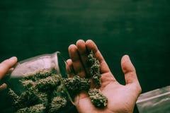 Sarclez dans les mains d'un homme dans la perspective de peser le ton vert déprimé image stock