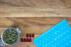 Sarclez les bourgeons dans le pot avec les ours gommeux rouges avec le moule sur la table en bois photos libres de droits