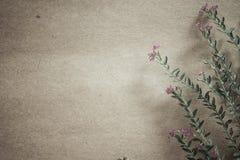 Sarclez les fleurs dans le style de couleur de vintage sur la texture de papier de mûre Image libre de droits