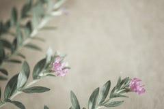 Sarclez les fleurs dans le style de couleur de vintage sur la texture de papier de mûre illustration libre de droits