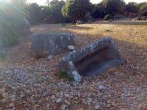 sarcofaag Stock Afbeelding