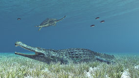 Sarcosuchus and Archelon Royalty Free Stock Images