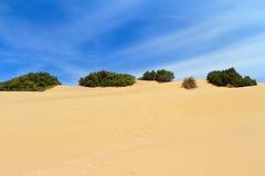 Sardegna - Dune in Piscinas Stock Image