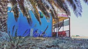 Sardegna/Italy. Beach,palm,sun,holidays bike Italy royalty free stock photos