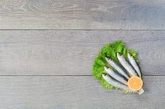 Sardina fresca su lattuga con il limone Fotografia Stock Libera da Diritti