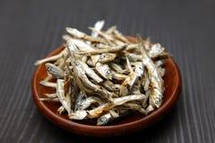 Sardina secada para la acción de sopa japonesa Imagen de archivo
