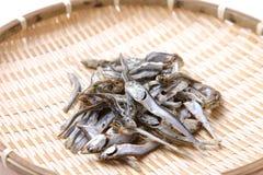 Sardina secada para la acción de sopa japonesa Fotografía de archivo libre de regalías