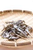 Sardina secada para la acción de sopa japonesa Foto de archivo libre de regalías