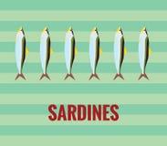 Sardinas Imagen de archivo