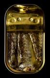 Sardinas conservadas fotografía de archivo libre de regalías