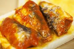 Sardinas en salsa de tomate en una parte de la tostada Imagen de archivo