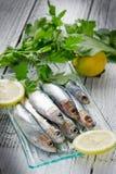 Sardinas frescas con el limón foto de archivo libre de regalías