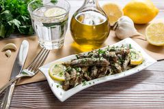 Sardinas frescas para el almuerzo Imagen de archivo