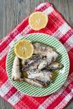 sardine Immagine Stock