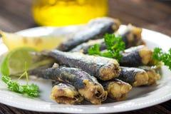 sardine Immagini Stock