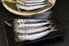 sardine Photos libres de droits
