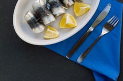 sardine Fotografie Stock