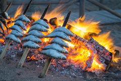 Sardine BBQ Stock Photos