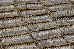 Sardine brochettes in cambodia Stock Photography