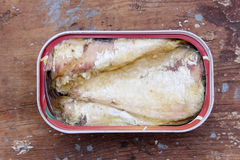 Sardine can. Cooked sardine can on wooden background Stock Photos
