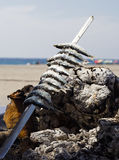 Sardine che cucinano sulla spiaggia Immagine Stock Libera da Diritti