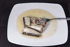 Sardine. Conserve sardine a meal with high nutritional value and omega 3 Royalty Free Stock Images