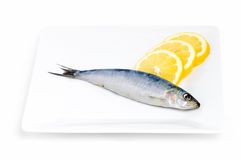 Sardine et citron Photographie stock