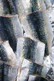 Sardine fish fillet skin texture on market Stock Photography