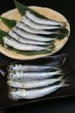 Sardine. I served sardine produced in Japan to a colander Royalty Free Stock Image