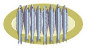 Sardine platter royalty free illustration