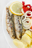 Sardine with potato, onion Stock Photography