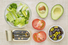 Sardine salad ingredients Royalty Free Stock Image