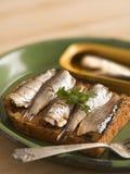 Sardine sandwich Royalty Free Stock Photos