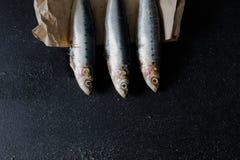 Sardine su fondo scuro Fotografie Stock Libere da Diritti