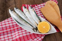 Sardine sul piatto bianco Fotografia Stock