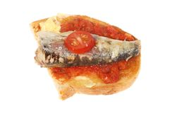 Sardine on toast. Sardine and tomato on buttered toast isolated against white Royalty Free Stock Images