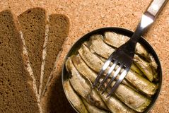 SardineBlechdose mit Brot stockfotografie