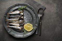 sardinen Lizenzfreie Stockfotos