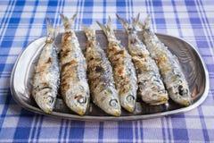 sardinen Stockbilder