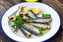 sardinen lizenzfreie stockfotografie
