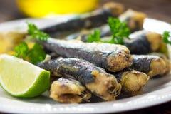 sardinen stockfotos