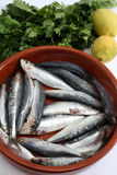 Sardinen panieren und Tomatevertikale Lizenzfreie Stockfotografie